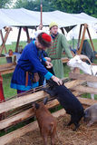 Το Reenactors παρουσιάζει δεξιότητές τους Ταΐζουν τα ζώα αγροκτημάτων Στοκ φωτογραφία με δικαίωμα ελεύθερης χρήσης