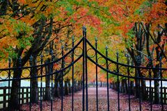Το Rockwood καλλιεργεί τον Οκτώβριο στοκ φωτογραφία με δικαίωμα ελεύθερης χρήσης