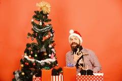 Το Santa κρατά τα μικρά σκυλιά κοντά στο χριστουγεννιάτικο δέντρο νέο έτος δώρων στοκ φωτογραφίες