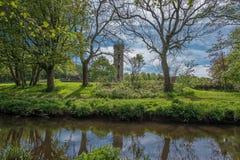 Το Scotlands σταθμεύει την αρχαία πρασινάδα Lucious καταστροφών και έναν ευγενή ρέοντας ποταμό με τις αντανακλάσεις στο νερό στοκ εικόνες με δικαίωμα ελεύθερης χρήσης