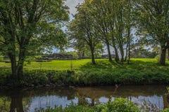 Το Scotlands σταθμεύει την αρχαία πρασινάδα Lucious καταστροφών και έναν ευγενή ρέοντας ποταμό με τις αντανακλάσεις στο νερό στοκ φωτογραφίες
