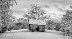 Το Sheparders στο βουνό 4 Στοκ Φωτογραφίες