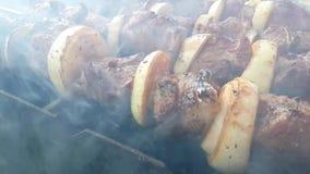 Το Shish kebab είναι τηγανισμένο ένα σε αργή κίνηση υπαίθριο ορεκτικό καρύκευμα πικ-νίκ σχαρών ορειχαλκουργών απόθεμα βίντεο