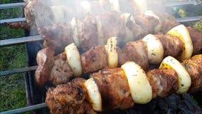 Το Shish kebab είναι τηγανισμένο ένα bbq σχαρών μαγείρων ορειχαλκουργών σε αργή κίνηση υπαίθριο ορεκτικό καρύκευμα πικ-νίκ απόθεμα βίντεο