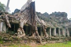 Το Siem συγκεντρώνει, Καμπότζη - 13 Δεκεμβρίου 2016: Preah Khan σε Angkor ένα famou Στοκ Φωτογραφίες