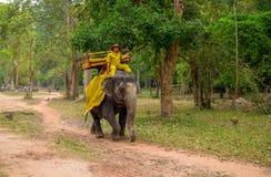 Το Siem συγκεντρώνει, Καμπότζη - 28 Μαρτίου 2018: Το άτομο στα παραδοσιακά καμποτζιανά ενδύματα οδηγά έναν ελέφαντα στο δάσος Στοκ Εικόνα