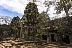 Το Siem συγκεντρώνει τον επιδρομέα τάφων Angkor Wat TA Prohm Στοκ εικόνες με δικαίωμα ελεύθερης χρήσης