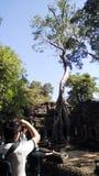 Το Siem συγκεντρώνει το ναό της Καμπότζης που αναλαμβάνεται από το δέντρο στοκ φωτογραφίες