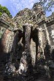 Το Siem συγκεντρώνει Angkor Wat που το πεζούλι των ελεφάντων είναι μέρος της περιτοιχισμένης πόλης Angkor Thom, ένας ναός σύνθετο Στοκ Εικόνα