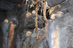 Το Skull Island βασιλεύει Kong Στοκ Εικόνα