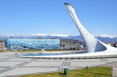 Το Sochi, η Ρωσία, Μάρτιος, 01, το 2016, το παγόβουνο παλατιών πάγου και η πηγή το Olbmpic βρίσκονται στο πάρκο Olimpic Στοκ εικόνα με δικαίωμα ελεύθερης χρήσης