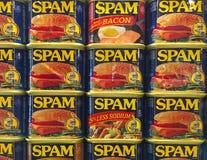 Το Spam κονσερβοποιεί την επίδειξη Στοκ φωτογραφίες με δικαίωμα ελεύθερης χρήσης