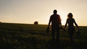 Το Steadicam πυροβόλησε: Αγρότες - ένας άνδρας και μια γυναίκα που περπατούν πέρα από τον τομέα στο ηλιοβασίλεμα Φέρτε ένα σπορόφ απόθεμα βίντεο