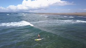Το Surfer οδηγά το κύμα με μια γουλιά, fuerteventura φιλμ μικρού μήκους