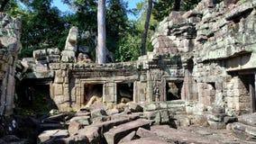 Το TA Phrom, Angkor, Siem συγκεντρώνει Στοκ Φωτογραφίες