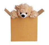 Το Teddy αντέχει από ένα κιβώτιο στοκ φωτογραφία με δικαίωμα ελεύθερης χρήσης