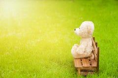 Το Teddy αντέχει κάθεται μόνο στον ξύλινο πάγκο στον πράσινο χορτοτάπητα Στοκ φωτογραφίες με δικαίωμα ελεύθερης χρήσης