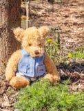 Το Teddy αντέχει κάθεται στα ξύλα Στοκ φωτογραφίες με δικαίωμα ελεύθερης χρήσης