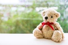 Το Teddy αντέχει με την κόκκινη συνεδρίαση κορδελλών δίπλα στο παράθυρο στοκ εικόνες με δικαίωμα ελεύθερης χρήσης