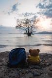Το Teddy αντέχει με τη θάλασσα στο υπόβαθρο θαμπάδων λυκόφατος Στοκ φωτογραφίες με δικαίωμα ελεύθερης χρήσης