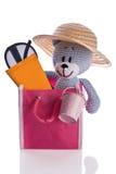 Το Teddy αντέχει με το καπέλο suncream και τα γυαλιά ηλίου σε μια τσάντα Στοκ Εικόνες