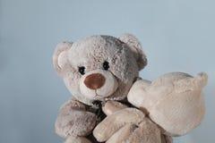 Το Teddy αντέχει με το teddy-παιδί Στοκ εικόνες με δικαίωμα ελεύθερης χρήσης