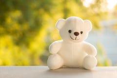 Το Teddy αντέχει με Στοκ Φωτογραφίες