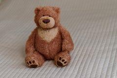 Το Teddy αντέχει, μόνος teddy αντέχει στο σπίτι Στοκ Φωτογραφία