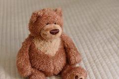 Το Teddy αντέχει, μόνος teddy αντέχει στο σπίτι Στοκ εικόνα με δικαίωμα ελεύθερης χρήσης