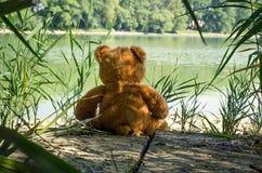 Το Teddy αντέχει το παιχνίδι Στοκ φωτογραφία με δικαίωμα ελεύθερης χρήσης