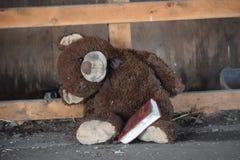 Το Teddy αντέχει τη Βίβλο του στοκ εικόνες με δικαίωμα ελεύθερης χρήσης