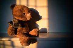 Το Teddy αντέχει τη συνεδρίαση κουκλών εκτός από το παράθυρο με το φως ηλιοβασιλέματος σπόλα Στοκ Εικόνες