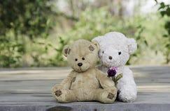 Το Teddy αντέχει το ζεύγος Στοκ Εικόνες