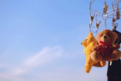 Το Teddy αντέχει το μπλε ουρανό το πρωί Στοκ εικόνα με δικαίωμα ελεύθερης χρήσης
