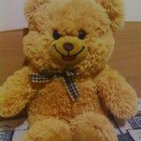 Το Teddy αντέχει το παιχνίδι Στοκ Εικόνες