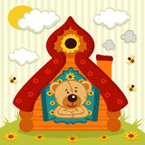 Το Teddy αντέχει το σπίτι Στοκ Εικόνες