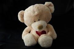 Το Teddy αντέχει Στοκ Εικόνα