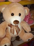 Το Teddy αντέχει & x22 Brown& x22  στοκ εικόνες με δικαίωμα ελεύθερης χρήσης