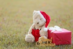 Το Teddy αντέχουν και τα κιβώτια δώρων στο χορτοτάπητα Στοκ Φωτογραφίες
