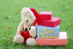 Το Teddy αντέχουν και τα κιβώτια δώρων στο χορτοτάπητα Στοκ Εικόνα