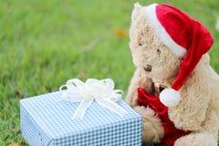 Το Teddy αντέχουν και τα κιβώτια δώρων στο χορτοτάπητα Στοκ Φωτογραφία