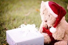 Το Teddy αντέχουν και τα κιβώτια δώρων στο χορτοτάπητα Στοκ Εικόνες