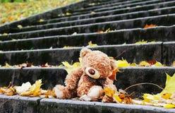 Το Teddy αφορά τα σκαλοπάτια Στοκ Φωτογραφία