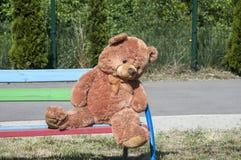 Το Teddy αφορά την κινηματογράφηση σε πρώτο πλάνο πάγκων Στοκ Εικόνες