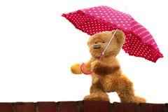 Το Teddy αφορά την ομπρέλα το άσπρο υπόβαθρο Στοκ εικόνες με δικαίωμα ελεύθερης χρήσης