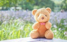Το Teddy αφορά τον ξύλινο πίνακα Στοκ φωτογραφία με δικαίωμα ελεύθερης χρήσης