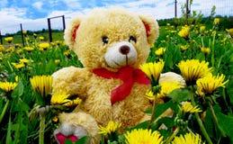 Το Teddy αφορά το παιχνίδι τη χλόη Στοκ φωτογραφία με δικαίωμα ελεύθερης χρήσης