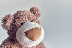 Το Teddy το παιχνίδι teddy αφορά απομονωμένος ένα ελαφρύ υπόβαθρο κινηματογράφηση σε πρώτο πλάνο του κεφαλιού μιας teddy αρκούδας στοκ εικόνα με δικαίωμα ελεύθερης χρήσης