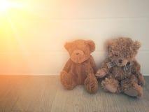 Το Teddys αντέχει την κούκλα Στοκ φωτογραφία με δικαίωμα ελεύθερης χρήσης