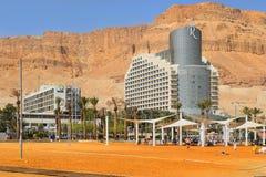Το Vacationers και οι τουρίστες λούζουν στη νεκρή θάλασσα, Ισραήλ Στοκ Εικόνες
